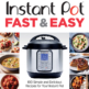 Instant Pot Fast and Easy Cookbook by Urvashi Pitre