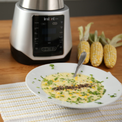 ace plus soup. ace blender recipes